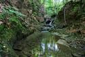 Okolitá príroda